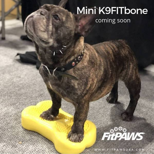 FitPaws Mini K9FitBone - 2 pack