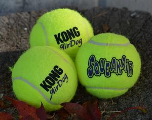 Bilde av Kong Airdog Squeaker Tennis